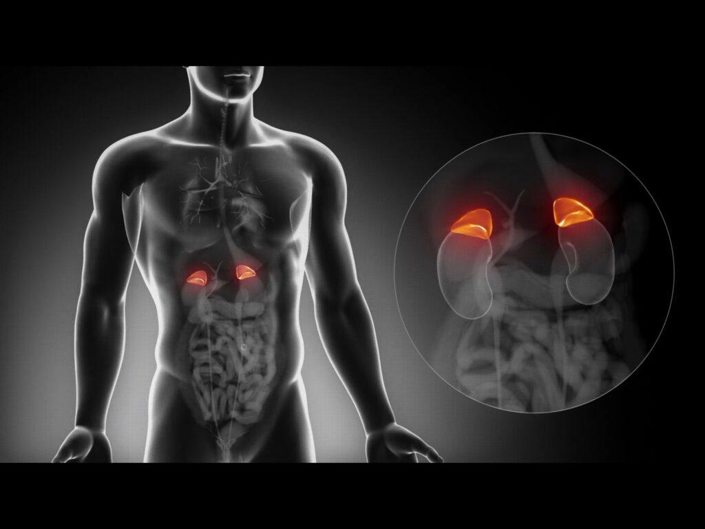 ont i binjurarna symptom