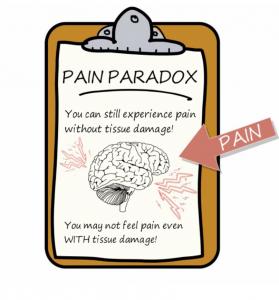 Smärtparadoxen